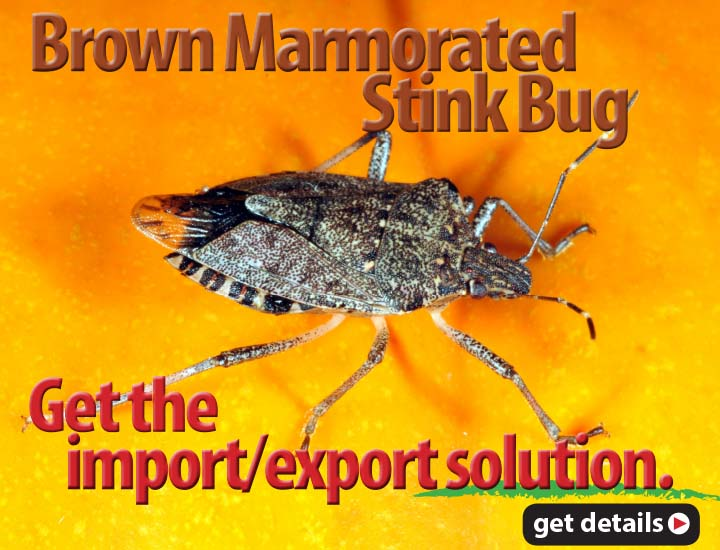 The import-export solution for the brown marmorated stink bug that meets New Zealand and Australia import requirements.